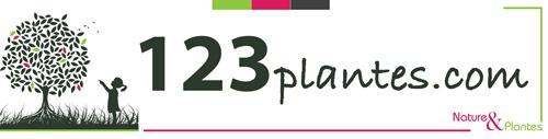 Logo du site en ligne 123plantes.com