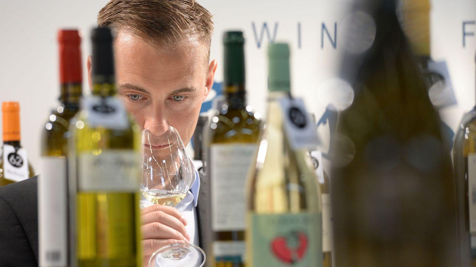 Vente de vin, la meilleure option