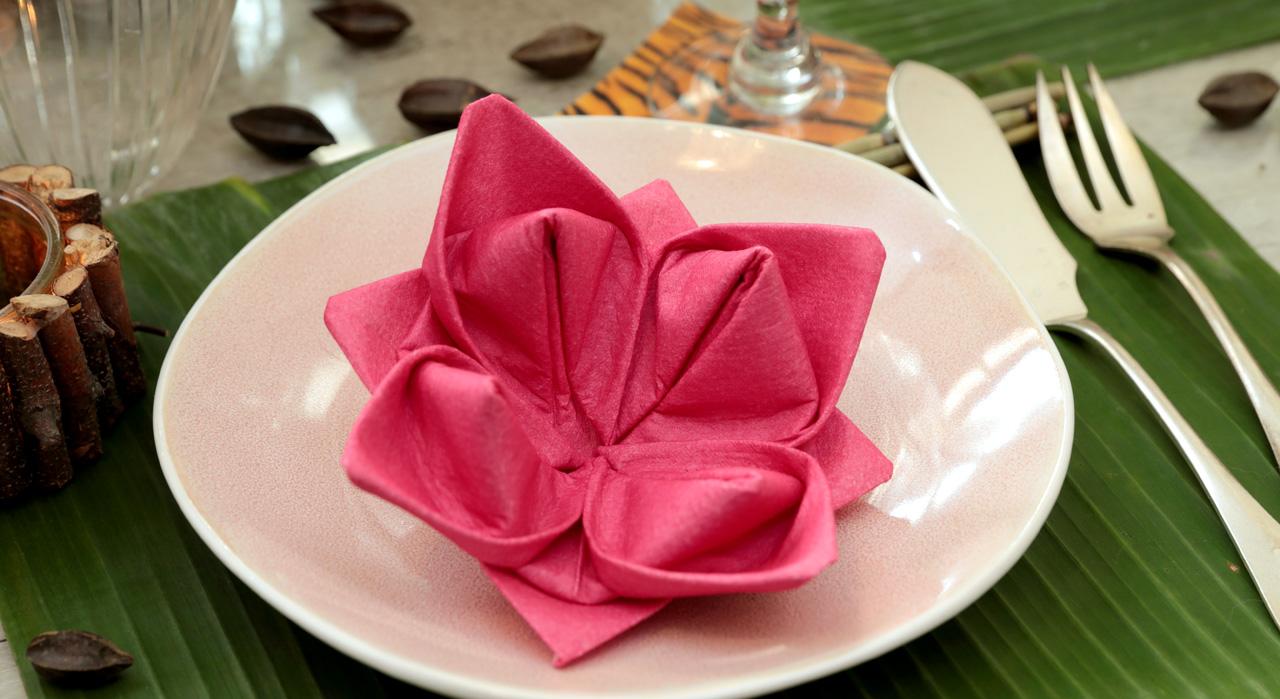 Comment plier des serviettes en papier - Plier des serviettes ...